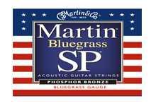 MSP 4250 struny