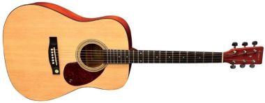 Akustická kytara TENSON D1 Dreadnought Gewa