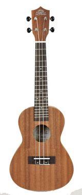 BaCH tenor ukulele