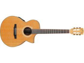 Ibanez EWN 30 SYE - elektroakustická kytara