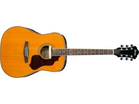SGE 120 akustická kytara