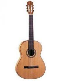 50 (S) klasická kytara