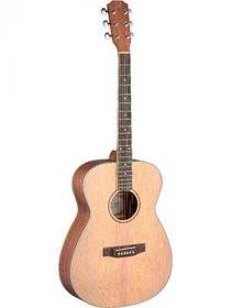 James Neligan ASY-A akustická kytara