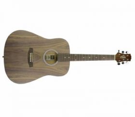 Ashton D20 OV kytara akustická