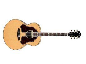 SGE 530 elektroakustická kytara