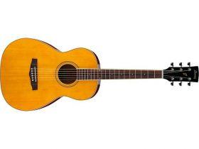 Ibanez PN 15 ATN akustická kytara