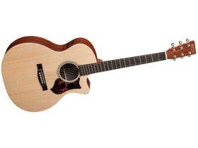 GPCPA5  elektroakustická kytara
